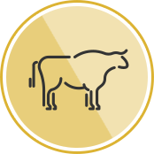 beef_icon