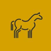 equine_icon